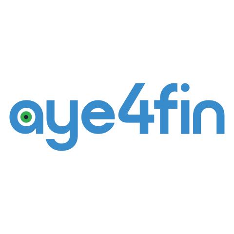 Partnerangebot: Kostenloses Standard Payment-Audit-Paket von aye4fin 1