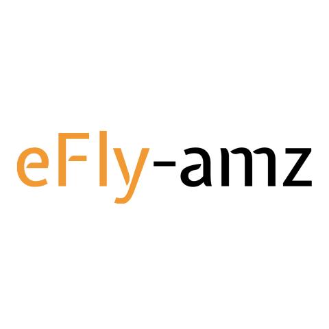 Partnerangebot: 1 Monat kostenlose Amazon PPC Betreuung von eFly-amz 1